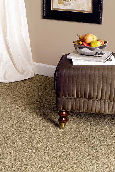 Adding Color To Your Indianapolis Home With Carpet