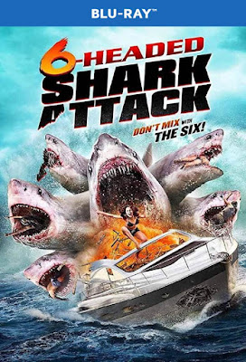 6-Headed Shark Attack 2018 BD25 Latino