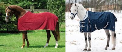 Comparaison et différence entre une chemise et une couverture pour chevaux.