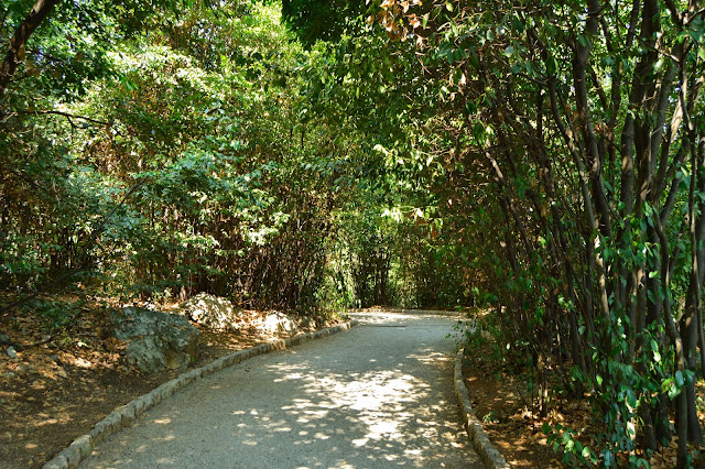 Park St. Jacob and Park Angiolina 3