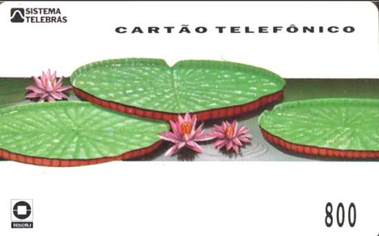 Cartão telefônico - Telerj - Vitória Régia