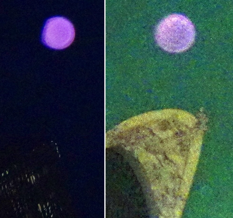 lilac orbs