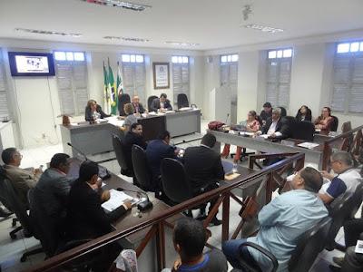 Câmara convoca secretária de Meio Ambiente para prestar esclarecimentos da pasta