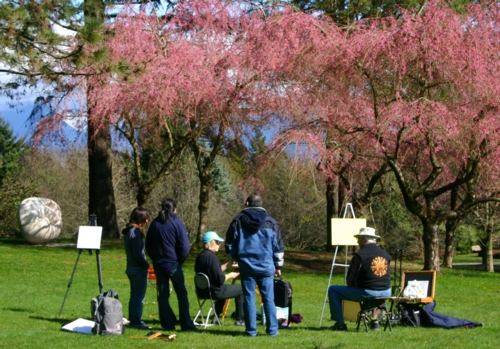 Vancouver Cherry Blossom festival  brought out the Plein Air (painting outside) artists.