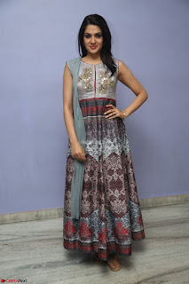Sakshi Chaudhary Beautiful Emroidery Work Sleeveless Anarkali Dress 067.JPG