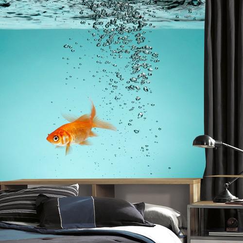 Aquarium Tapetti Kalat Vesi Bubbles Makuuhuoneen kuvakudos Piilotettu Valokuvatapetti