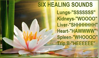 Tai Chi and Qigong with Liam: Six Healing Sounds