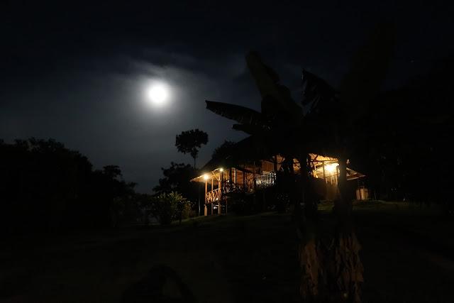 Noche en la selva de Puerto Maldonado