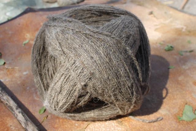 Sheep's wool georgia