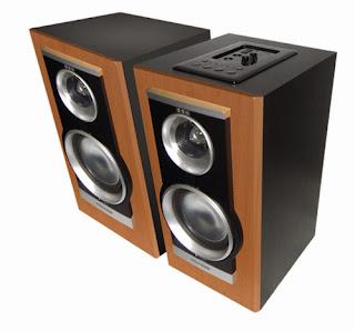 Speaker Polytron PAS 21M