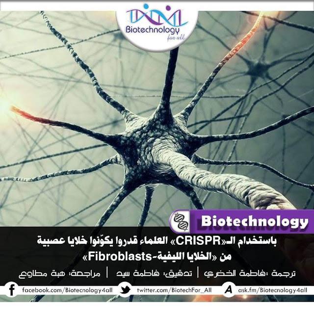 تكوين خلايا عصبية من خلايا ليفية باستخدام تقنية كريسبر للتعديل الجيني
