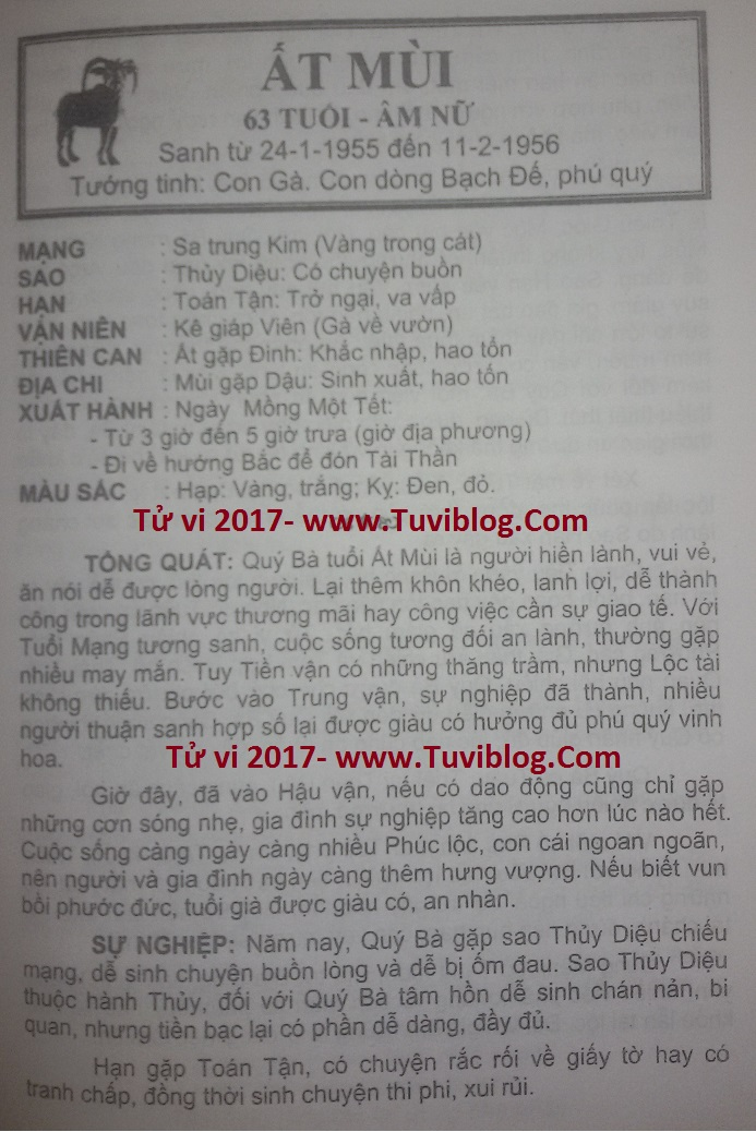 Tu vi AT Mui nam 2017 nu mang