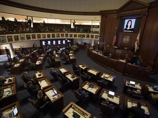 Florida Senate votes to restrict gun sales, arm teachers