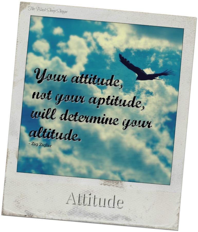 Your attitude, not your aptitude, will determine your altitude.