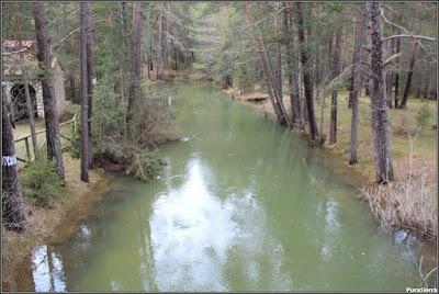 El río Tajo a su paso por el puente de las Tres Provincias