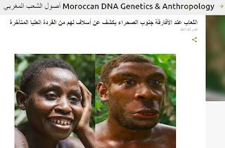 الأفارقة