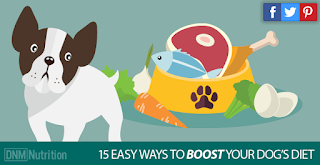 http://www.dogsnaturallymagazine.com/15-tips-improve-dogs-diet-today/
