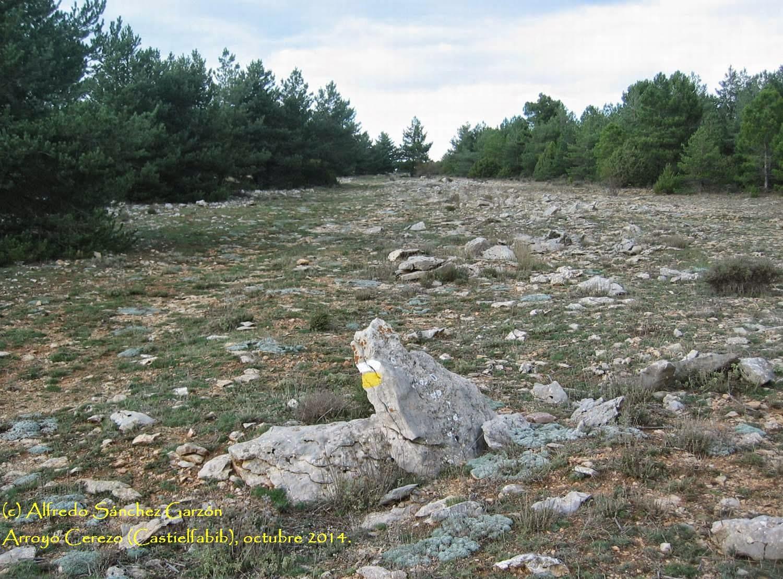arroyo-cerezo-castielfabib-tres-reinos-canchales