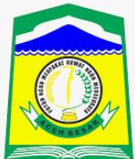 Lowongan CPNS Pemerintah Kabupaten Aceh Besar 2018