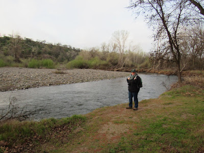 things to do in shasta county easy walking nature trails