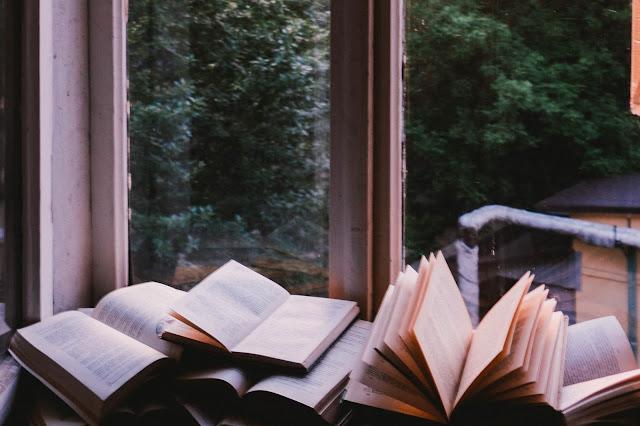 Minha meta literária e dicas para fazer a sua!