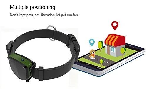 best small pet gps tracker