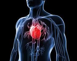pengobatan sakit jantung secara alami