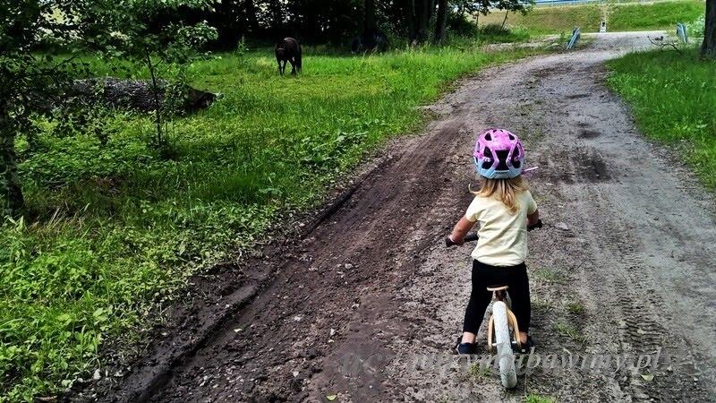 3-latek rowerek biegowy