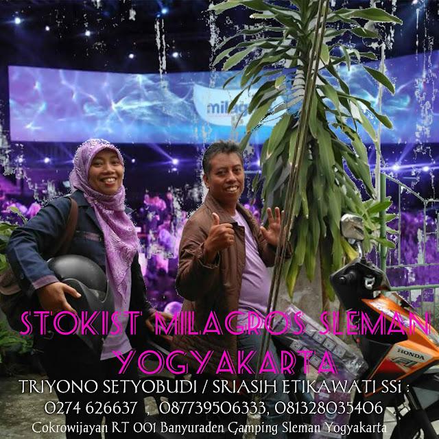 Stokis Air Milagros Yogyakarta | WhatsApp 081327570786