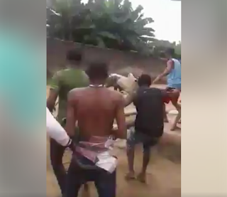 Aba youths chase Hausa man who allegedly turned to a cow to escape from them (photos/video)