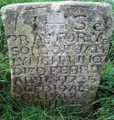 http://www.igp-web.com/IGPArchives/ire/cavan/photos/tombstones/mt-nugent-old/target14.html