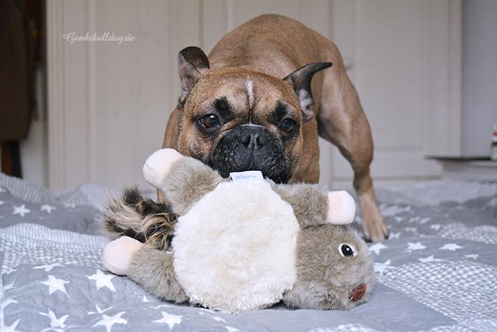 afp Hundespielzeug Orel und Ophelia