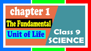 class 9 Notes BIOLOGY ch-1 The Fundamental Unit of Life