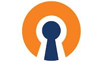 Download Open VPN Connect