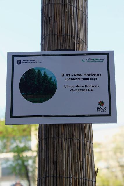 Табличка с названием дерева