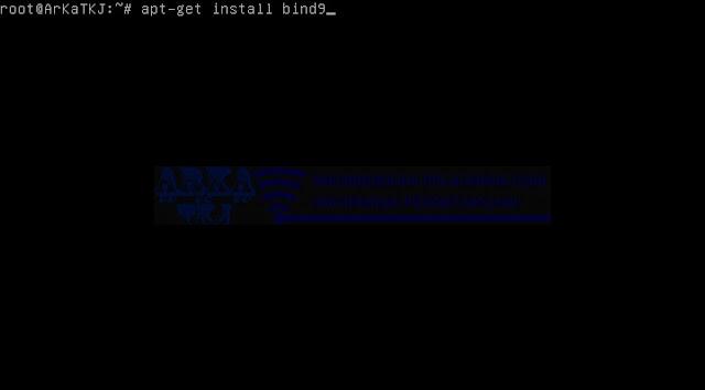Install Bind9