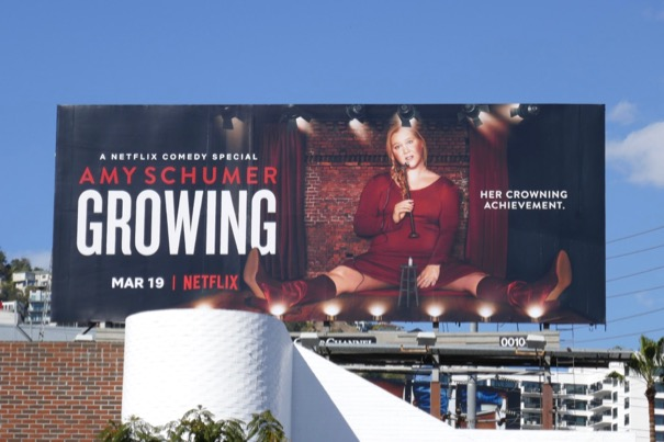 Amy Schumer Growing Netflix billboard