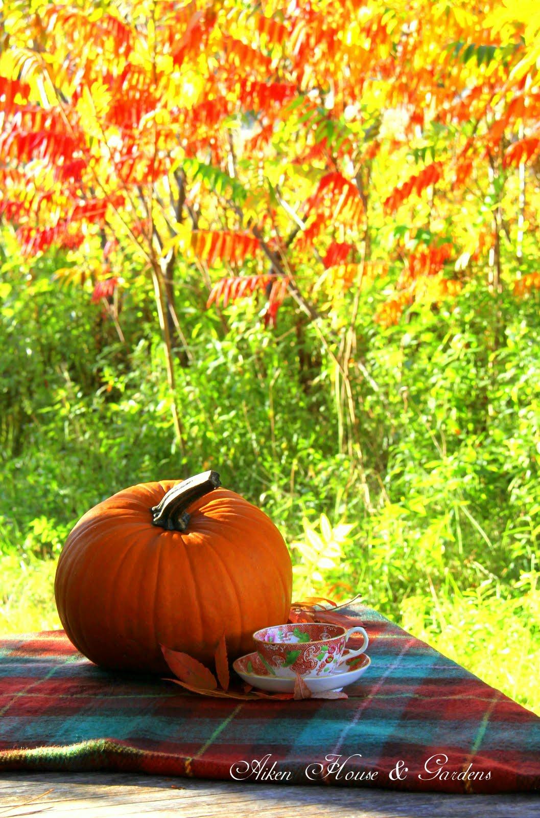Beautiful Autumn Sunset: Aiken House & Gardens: A Beautiful Autumn Day
