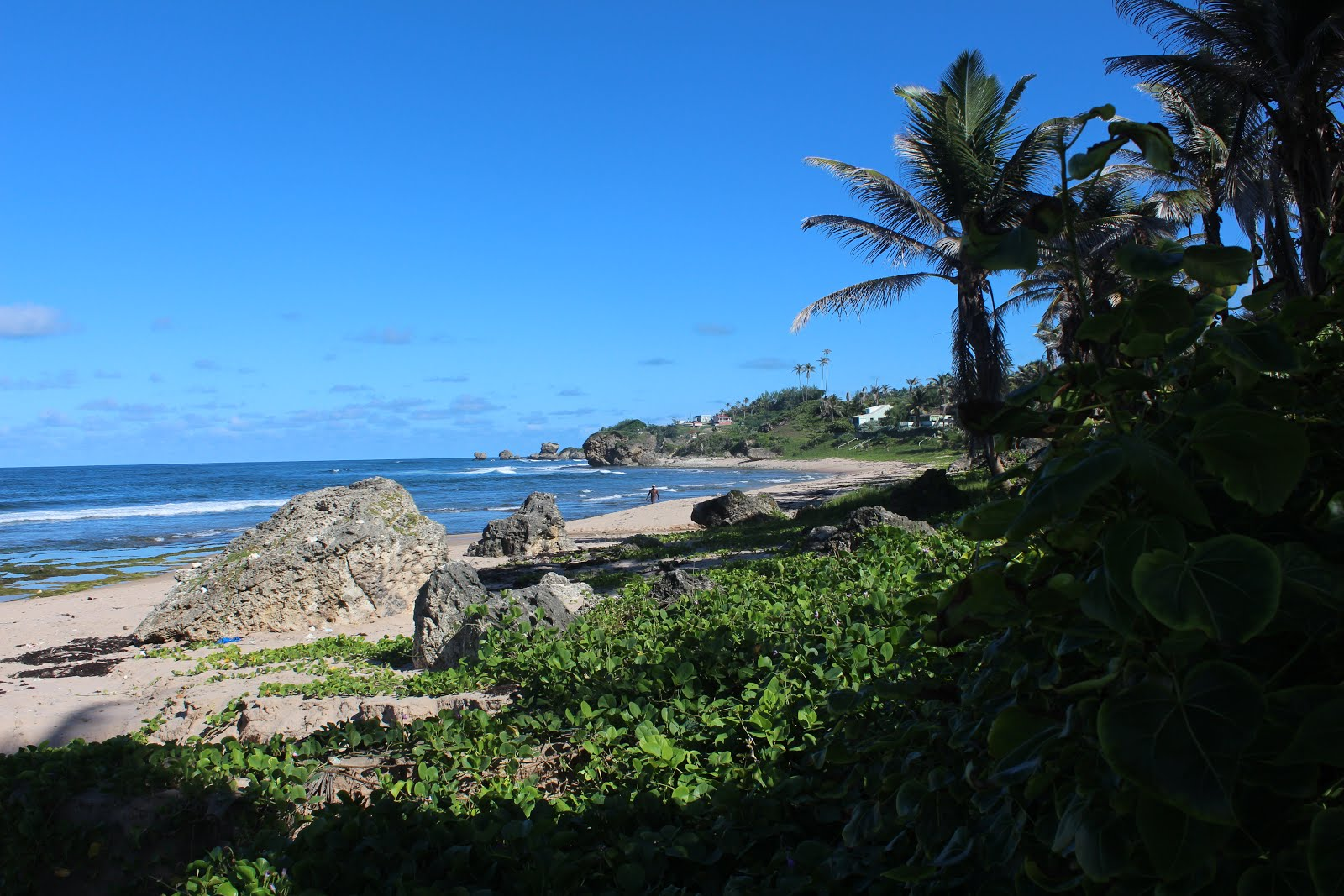 Beach View Bathsheba St Joseph Barbados