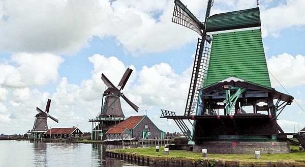 excursie-mori-de-vant-olanda