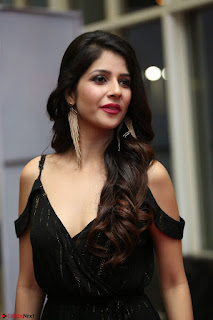 Kashish Vohra at Rogue Movie Audio Launch ~  (37).JPG