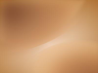 Ubuntu 7.04 default wallpaper