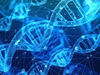 Pengeritan Dan Peran DNA Dalam Forensik Digital