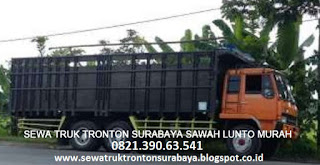SEWA TRUK TRONTON SURABAYA SAWAHLUNTO MURAH