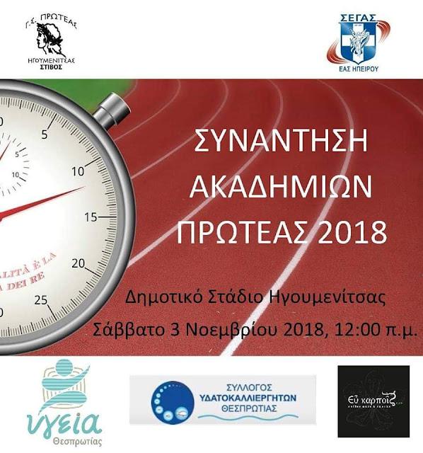 Συνάντηση ακαδημιών Πρωτέας 2018, σήμερα στην Ηγουμενίτσα