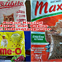 8 Makanan Kucing Anggora Yang Bagus No 6 Buatan Sendiri