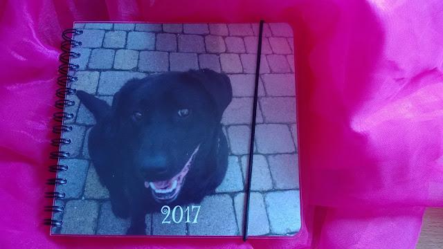 mit Schwarzen Labrador Hund für das Jahr 2017