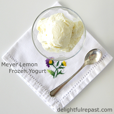 7 Ice Cream and Frozen Dessert Recipes / Beat the heat with a frozen treat / www.delightfulrepast.com