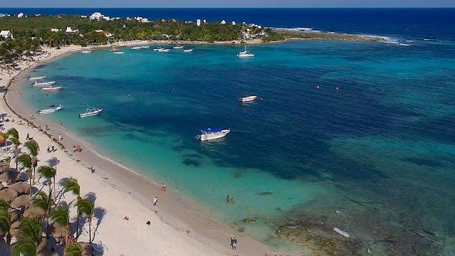 Una extraña alga marina podría provocar un desastre ecológico en México
