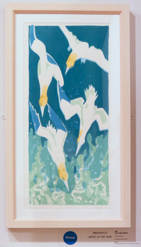 The Birdwatch-Swarovski Artist of the Year Award: Fishing Frenzy by Jane Smith ASWLA